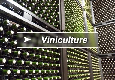 Conteneurs viticoles